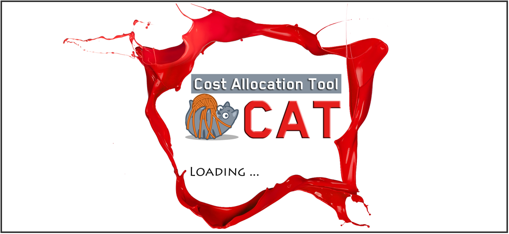 Cost Allocation Tool (CAT)